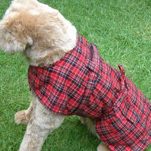 Dog Jacket Cotswool Large
