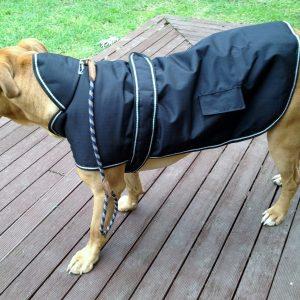 Dog Jacket Waterproof Hooded Large