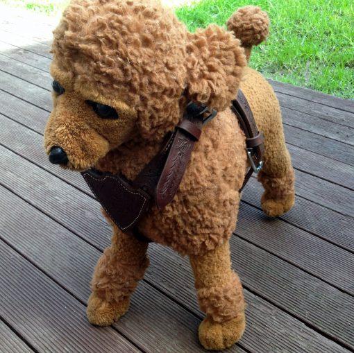 Dog Walking Harness Small