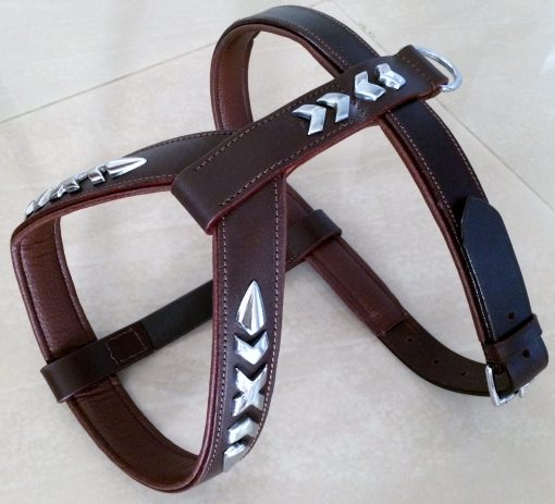 Dog Walking Harness Flat Studs Oiled Leather