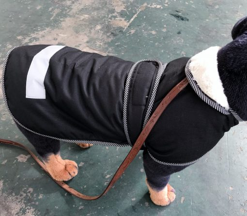 Water Proof Dog Jacket Hooded 55cm