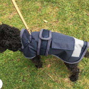 Dog Jacket Waterproof Hooded Small