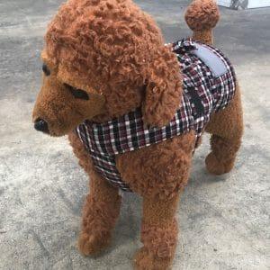 Dog Jacket Cotswool XS